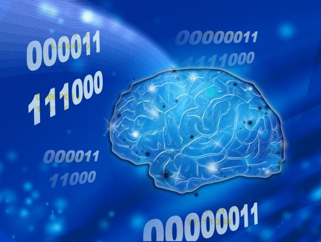 記憶のゴールデンタイムを知ろう!!効果的な記憶を。